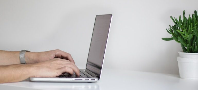 a person using a computer and a plant next to it